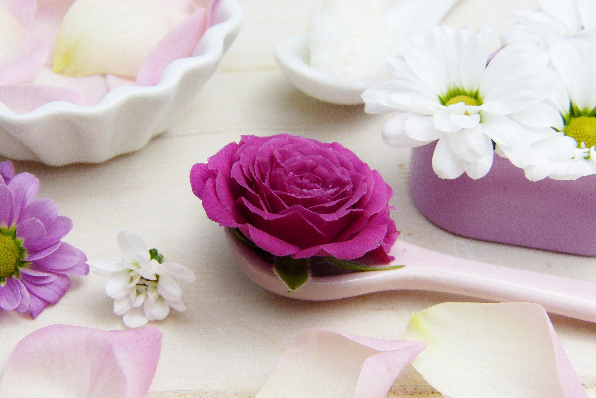 роза върху лъжичка и маргаритки